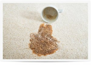 Carpet Stain Removal Service Los Angeles