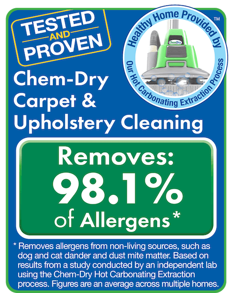 upholstery cleaning service in san fernando