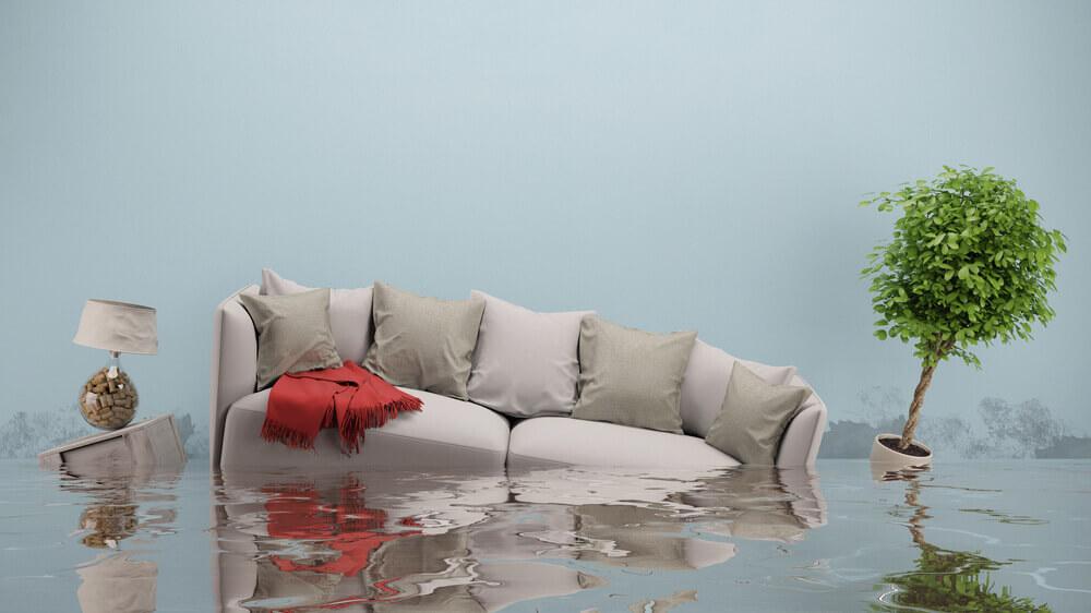 water damage restoration san fernando