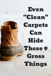 carpet cleaning balboa park