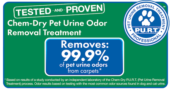 chem dry pet urine removal study graphic