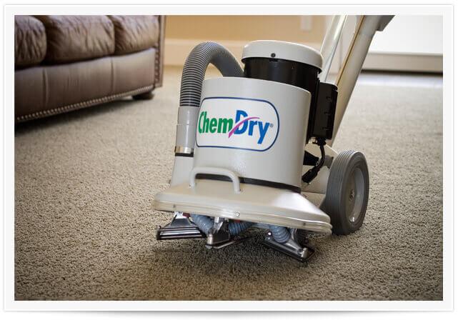 carpet cleaner powerhead
